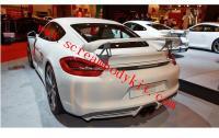 13-15 Porsche 981 cayman boxster update TECHAR rear spoiler WING